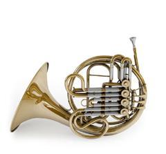 圆号 French Horn