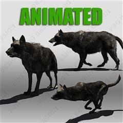 大灰狼 黑狼 黑狗Black Wolf Animated