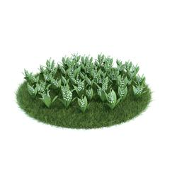 Evermotion Archmode 园艺植物 铃兰