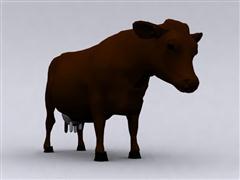 牛奶 cow