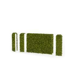 围墙系列 绿色爬山虎围墙4