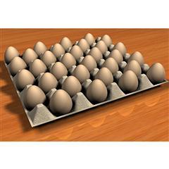 鸡蛋 egg