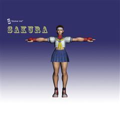 街霸人物模型系列 SAKURA