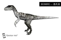 恐爪龙 deinonychus