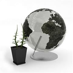 精美家居装饰用品   地球仪和盆栽