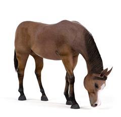 马 Horse 吃草 黄鬃马