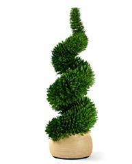 修剪成蛇状的盆栽
