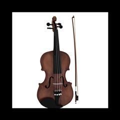 小提琴 Violin