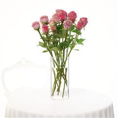 玫瑰花 rose